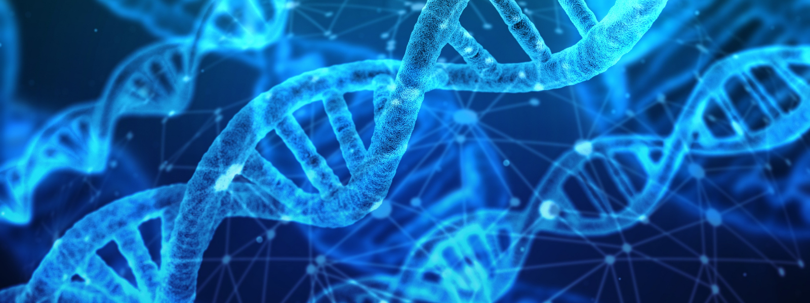 How Your Genes Affect Your Fitness and Nutrition