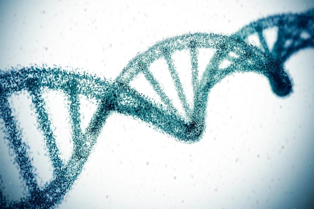 اللياقة والجينات
